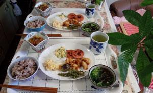 お昼ご飯 シソ・鶏・野菜の天ぷらに!