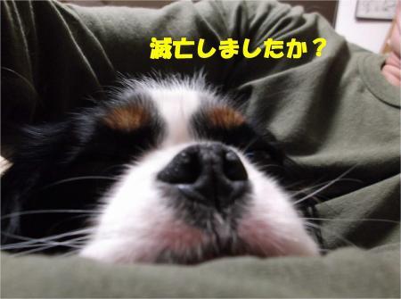 01_convert_20121221181856.jpg
