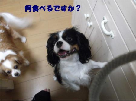 01_convert_20121226170906.jpg