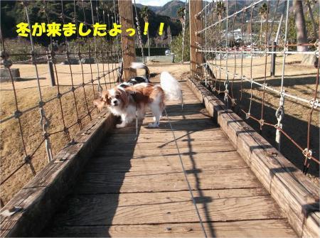 01_convert_20131214180232.jpg