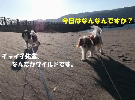 01_convert_20131216171630.jpg