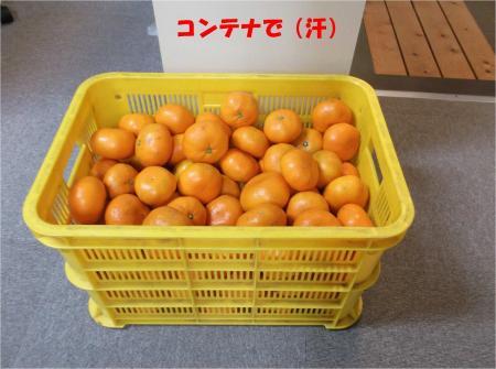 01_convert_20131217183421.jpg