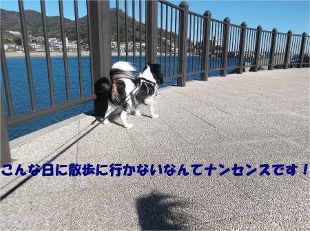 01_convert_20131221171651.jpg