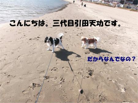 01_convert_20131230164724.jpg