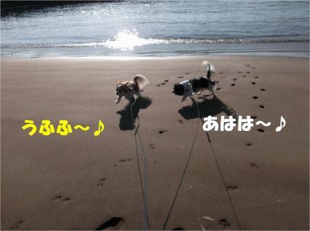 022_convert_20121217164803.jpg