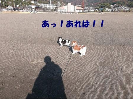 023_convert_20121217164816.jpg