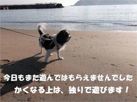 025_convert_20121217164841.jpg
