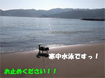 026_convert_20121217164854.jpg