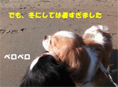 029_convert_20121217164936.jpg