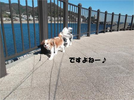 02_convert_20131221171707.jpg
