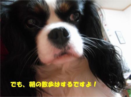 03-2_convert_20131228173258.jpg
