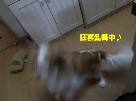 03_convert_20131225202013.jpg