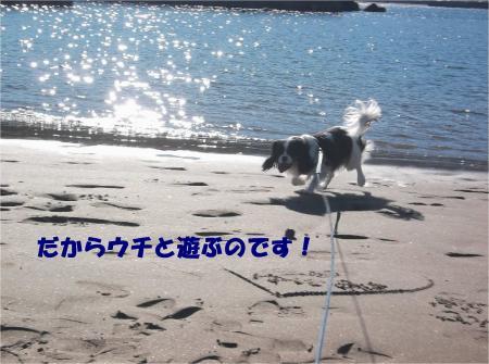 03_convert_20131229174200.jpg