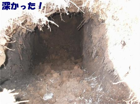 04_convert_20121218175529.jpg