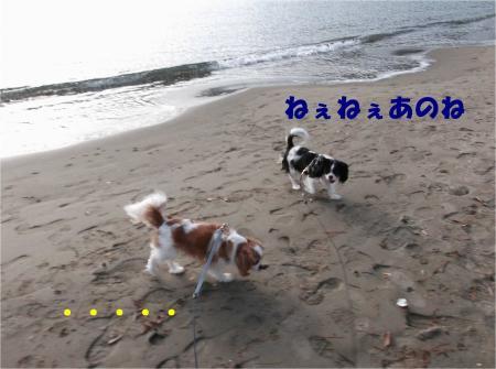 04_convert_20121224172636.jpg