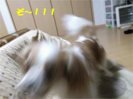 04_convert_20121225173916.jpg