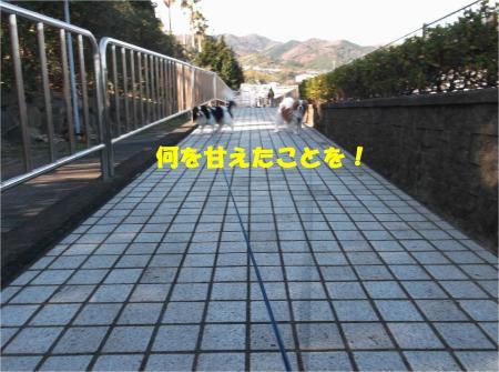 04_convert_20131214180310.jpg