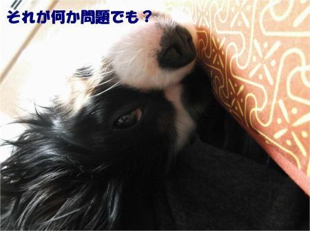 04_convert_20131217183454.jpg