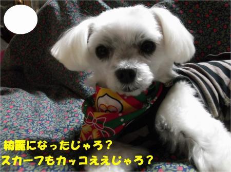 04_convert_20131219201250.jpg