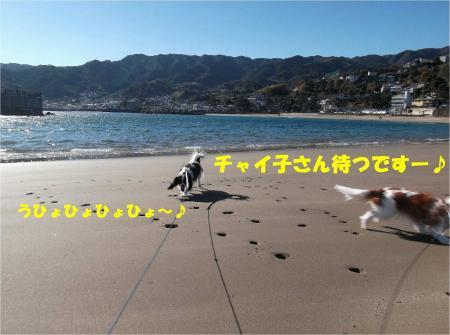 04_convert_20131221171729.jpg