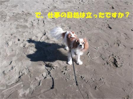 04_convert_20131229174212.jpg