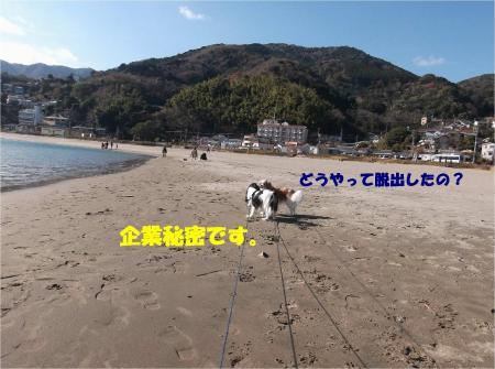04_convert_20131230164755.jpg