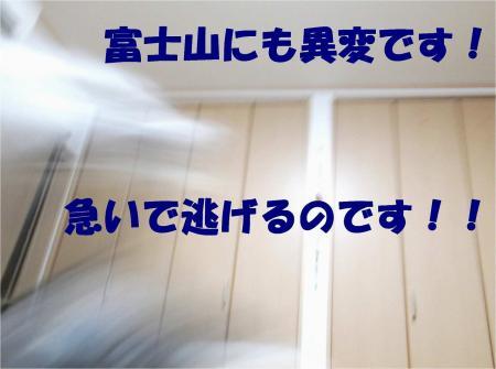 05_convert_20121220184654.jpg