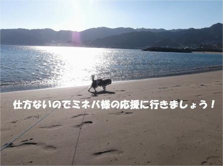 05_convert_20131216171717.jpg