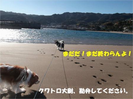 05_convert_20131221171740.jpg