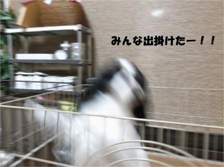 05_convert_20131230164806.jpg