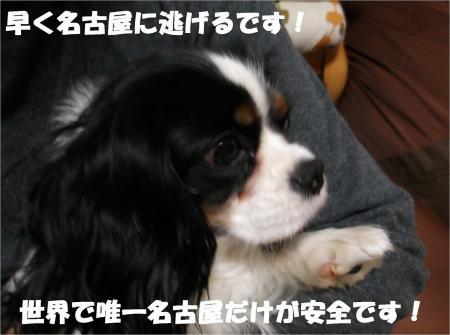 06_convert_20121220184707.jpg