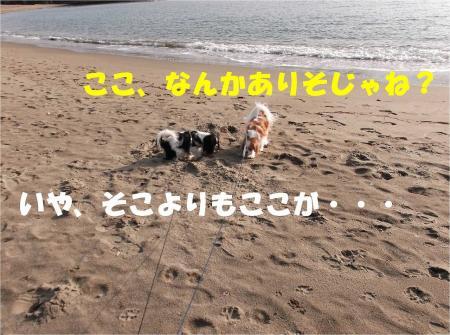 06_convert_20121224172702.jpg