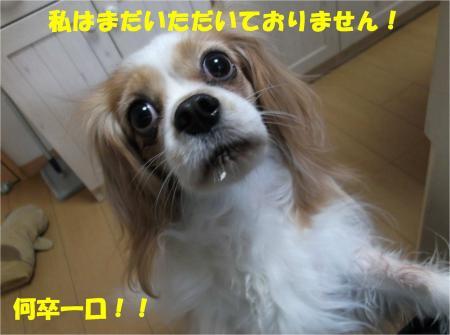 06_convert_20131225202038.jpg