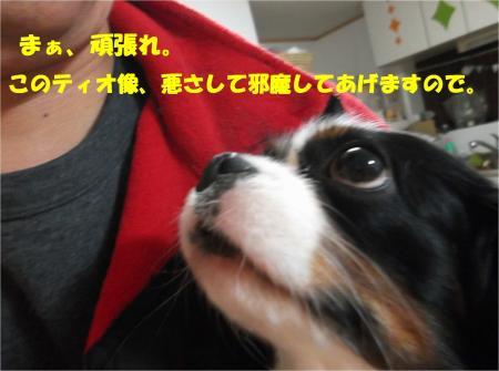 06_convert_20131228173328.jpg