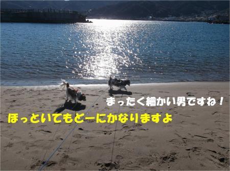 06_convert_20131229174236.jpg