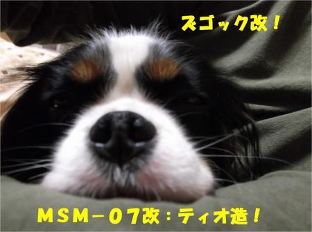 07_convert_20121221182022.jpg
