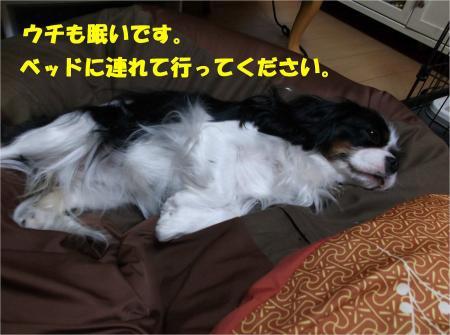 07_convert_20131213183841.jpg