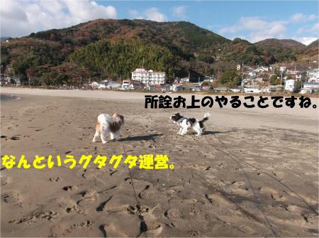 07_convert_20131216171743.jpg