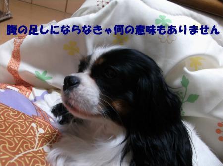 07_convert_20131220181853.jpg