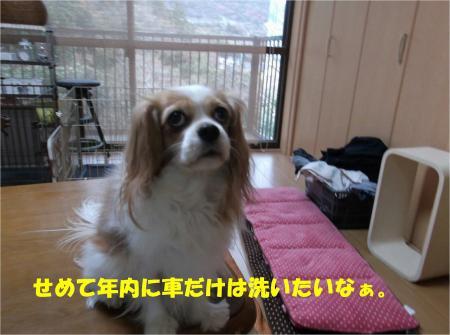 07_convert_20131226195148.jpg