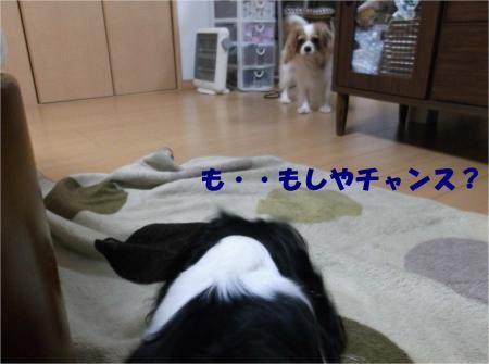 08_convert_20121212175441.jpg