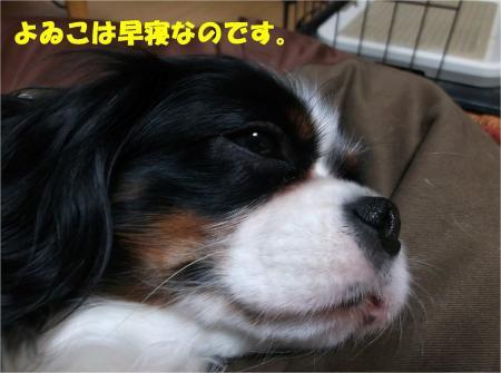 08_convert_20131213183851.jpg