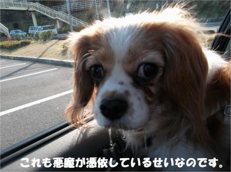 08_convert_20131223162102.jpg