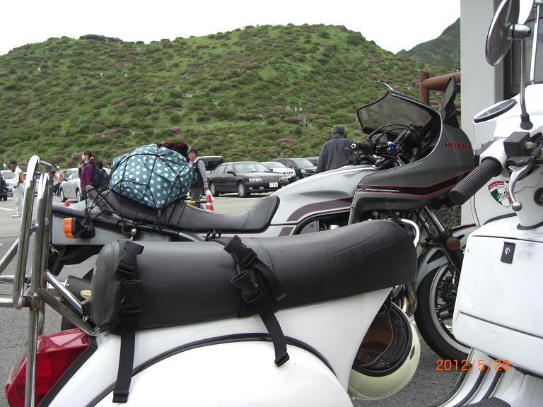 仙酔峡ミヤマキリシマ-2