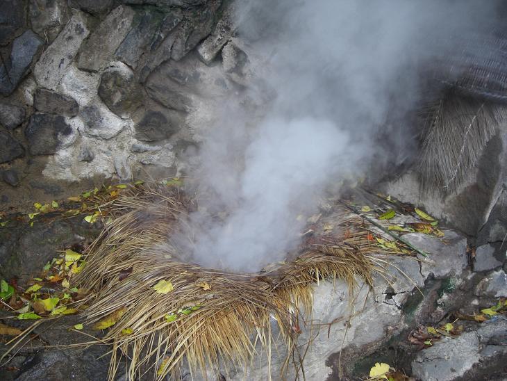 自然の蒸し器