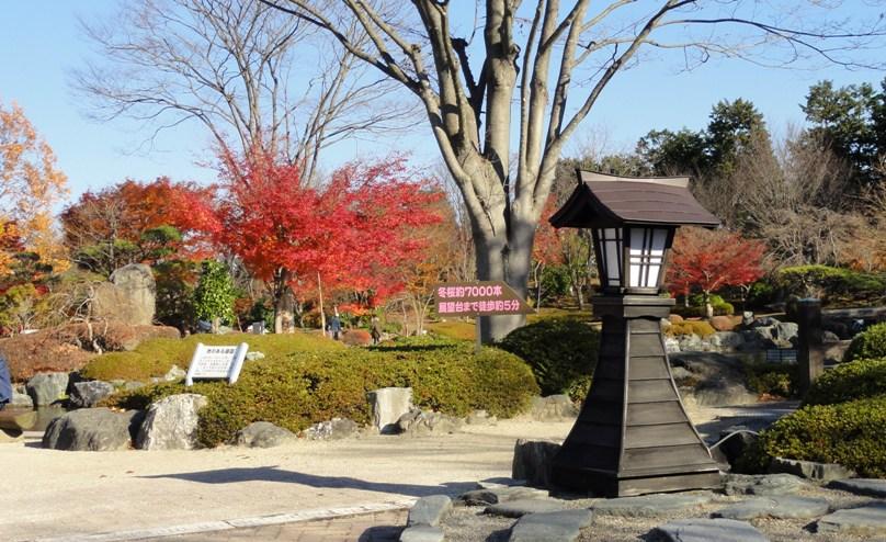 紅葉の桜山公園の辻行灯