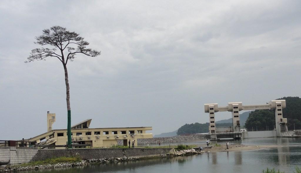 一本松  陸前高田  2012.7.15