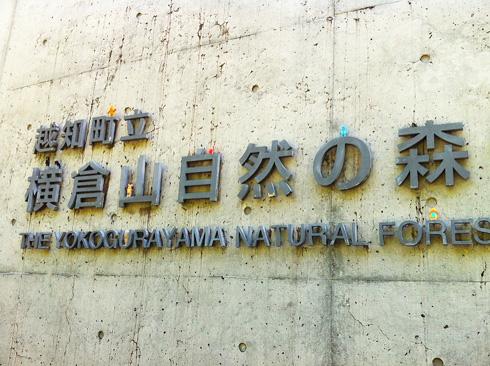 120902横倉山自然の森博物館