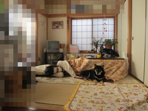 018_convert_20130107135112.jpg