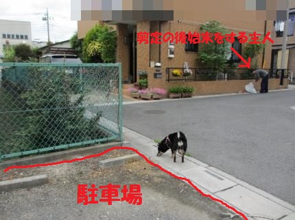 028_convert_20120430133248.jpg